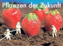 Pflanzen der Zukunft