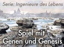 Spiel mit Genen und Genesis